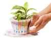 Microcredito, al via le prenotazioni