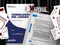 Consulenza del lavoro: un manuale per manager e professionisti